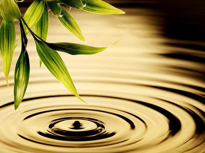 7 bảo pháp dưỡng sinh của danh nhân cổ đại: Áp dụng được ắt sẽ khỏe mạnh sống lâu - Ảnh 1.