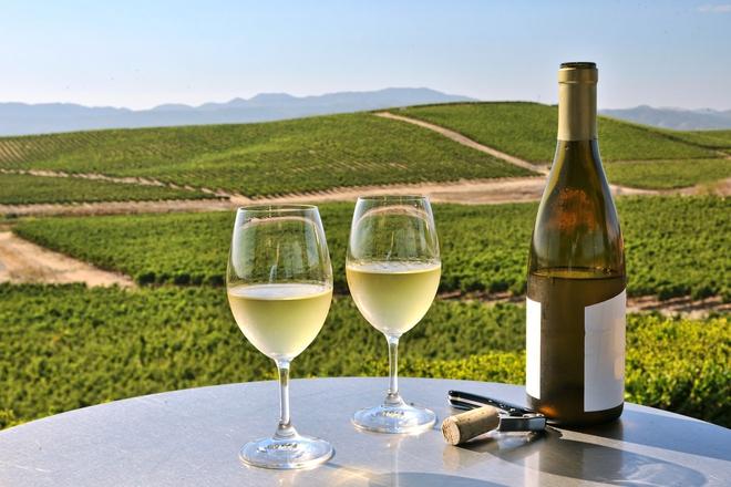 Nghiên cứu trên 300.000 người: Nguy cơ tử vong cao nếu uống rượu mà không ăn kèm món này - Ảnh 1.