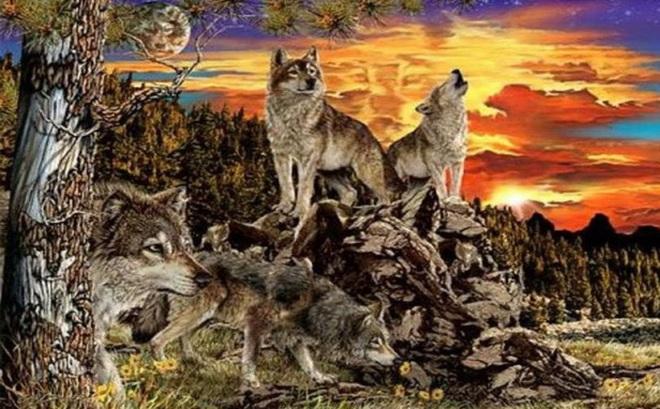 Có bao nhiêu chó sói trong tranh? Số lượng bạn nhìn thấy tiết lộ nhiều điều thú vị