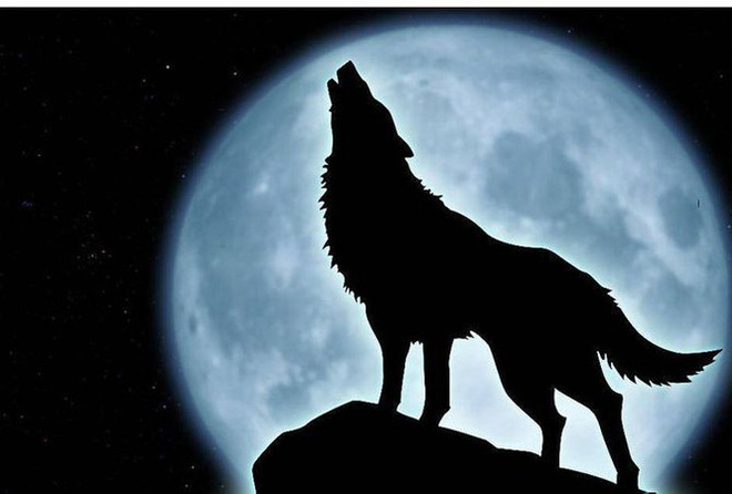 Có bao nhiêu chó sói trong tranh? Số lượng bạn nhìn thấy tiết lộ nhiều điều thú vị - Ảnh 1.