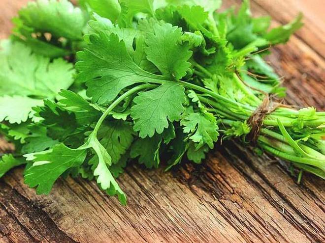 Rau mùi tốt thế nào? Bất ngờ với hàng loạt dưỡng chất trong loại rau rất quen thuộc với người Việt - Ảnh 1.