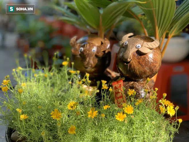 Sọ dừa bỏ đi được biến thành trâu cõng vàng, giá tiền triệu  - Ảnh 7.