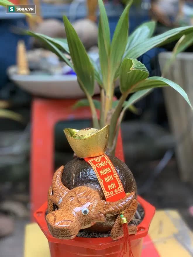 Sọ dừa bỏ đi được biến thành trâu cõng vàng, giá tiền triệu  - Ảnh 9.
