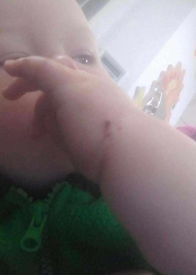 Tỉnh dậy giữa đêm, bà mẹ suýt ngất vì bị chuột bò lên mặt, vài ngày sau chuyện kinh dị xảy ra - Ảnh 5.
