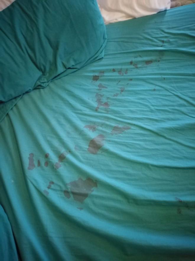 Tỉnh dậy giữa đêm, bà mẹ suýt ngất vì bị chuột bò lên mặt, vài ngày sau chuyện kinh dị xảy ra - Ảnh 2.