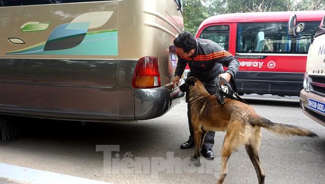 Cảnh khuyển tham gia rà soát xe phục vụ Đại hội XIII - Ảnh 10.