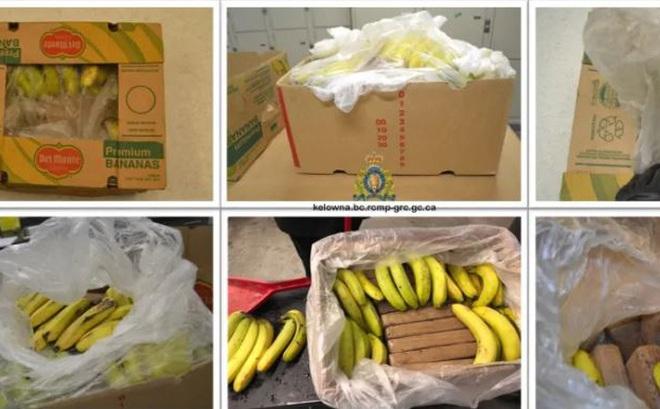 21 bánh cocaine giấu trong thùng chuối bị chuyển nhầm đến hiệu tạp hóa