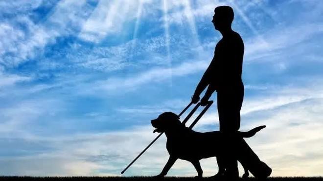 Tổ chức 1 cuộc thi chạy cho người và chó, vị thiên sứ xấu hổ không dám ngẩng mặt lên khi chứng kiến kết quả cuối cùng - Ảnh 2.