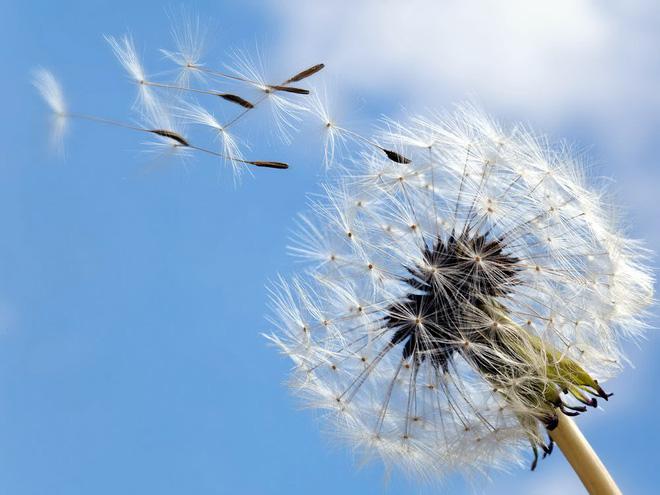 Ở đời có 5 quy luật, ai hiểu được sẽ hưởng lợi cả đời: Tránh xa tai ương, cuộc sống an yên, tự tại - Ảnh 4.