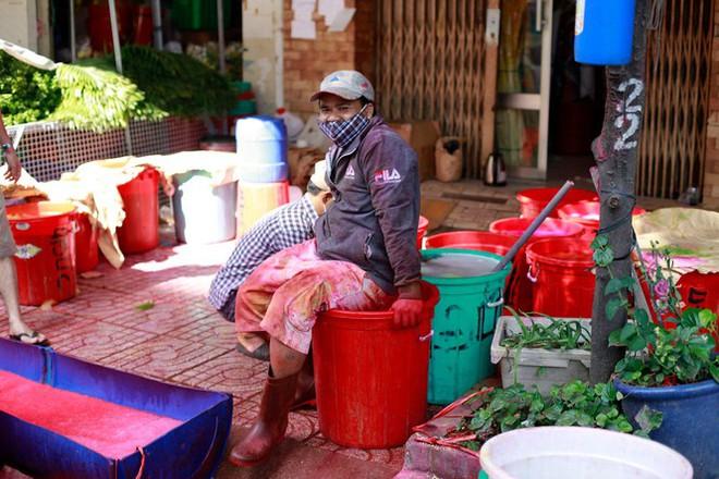 Chợ hoa đào nhuộm khoe sắc rực rỡ ở Đầm Sen - Ảnh 8.