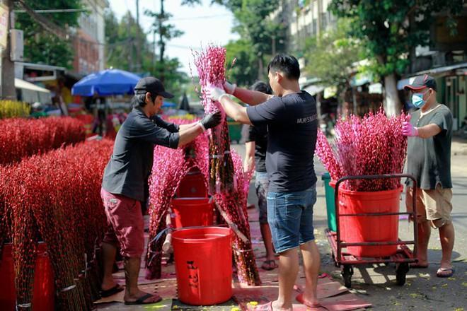 Chợ hoa đào nhuộm khoe sắc rực rỡ ở Đầm Sen - Ảnh 1.