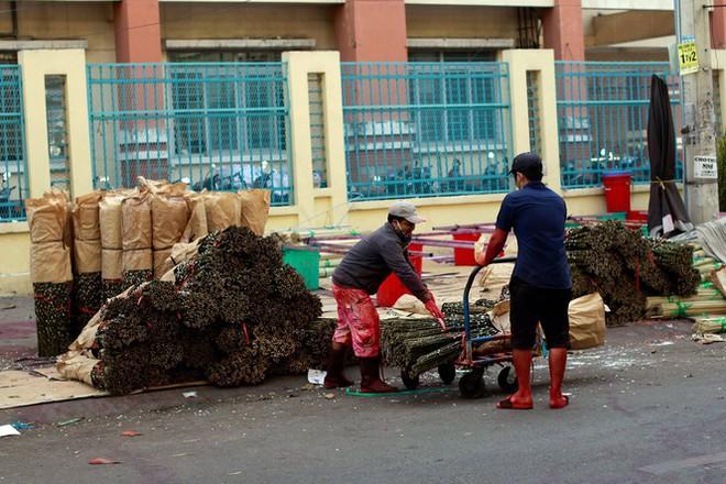 Chợ hoa đào nhuộm khoe sắc rực rỡ ở Đầm Sen - Ảnh 3.