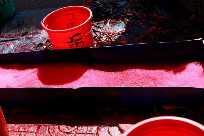 Chợ hoa đào nhuộm khoe sắc rực rỡ ở Đầm Sen - Ảnh 5.