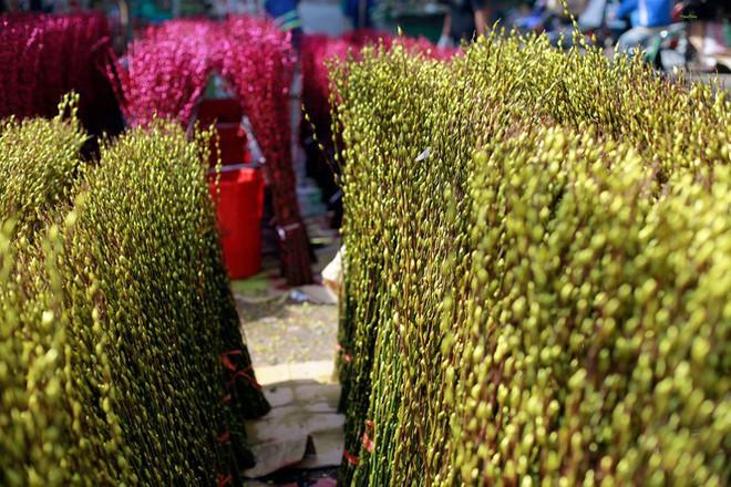 Chợ hoa đào nhuộm khoe sắc rực rỡ ở Đầm Sen - Ảnh 7.