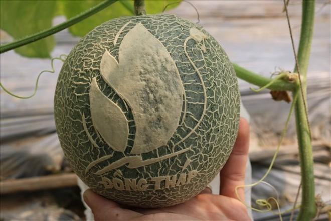 Gợi ý 5 loại quả Tết không đụng hàng, ẩn chứa hàm ý tốt đẹp trong năm mới Tân Sửu - Ảnh 5.
