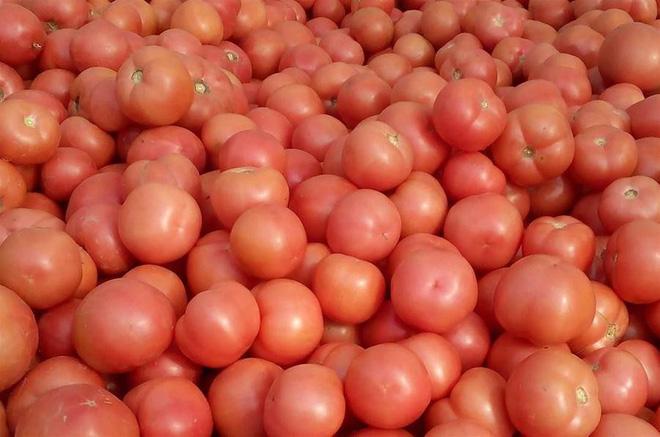 Không cần nước sôi, biết chiêu này 30 giây là vỏ cà chua được lột sạch - Ảnh 1.