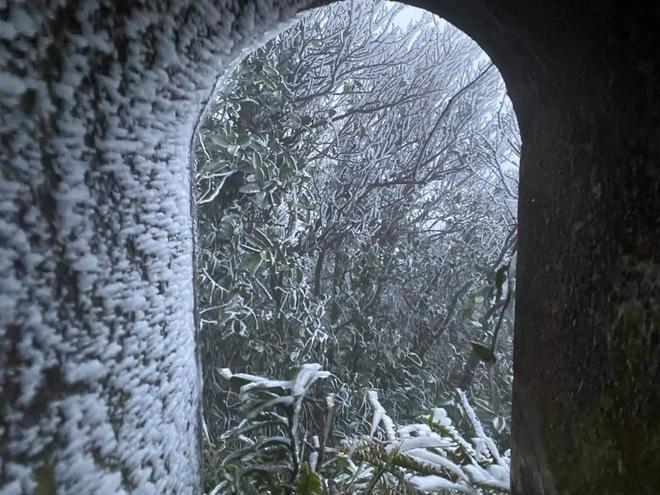 Cận cảnh băng giá phủ trắng đỉnh Mẫu Sơn, Yên Tử, Phia Oắc, du khách thích thú chụp ảnh - Ảnh 3.