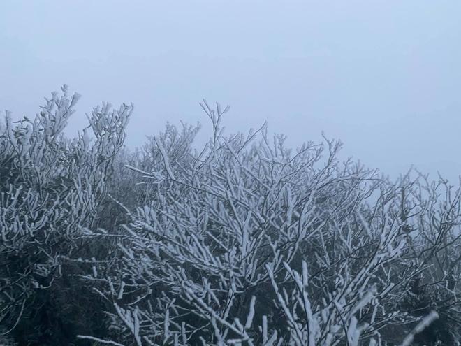 Cận cảnh băng giá phủ trắng đỉnh Mẫu Sơn, Yên Tử, Phia Oắc, du khách thích thú chụp ảnh - Ảnh 5.
