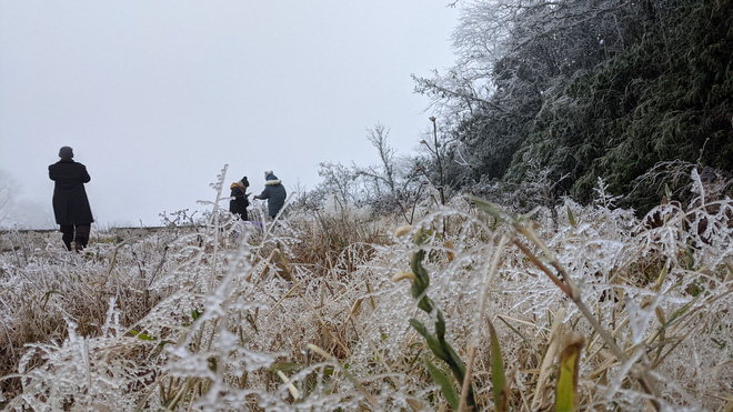 Cận cảnh băng giá phủ trắng đỉnh Mẫu Sơn, Yên Tử, Phia Oắc, du khách thích thú chụp ảnh - Ảnh 15.