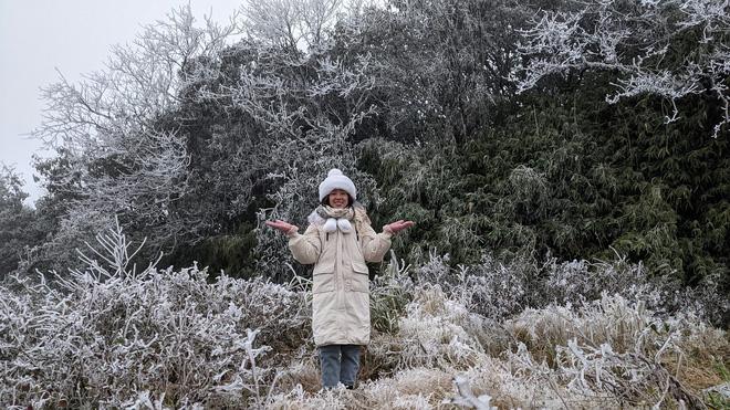 Cận cảnh băng giá phủ trắng đỉnh Mẫu Sơn, Yên Tử, Phia Oắc, du khách thích thú chụp ảnh - Ảnh 17.