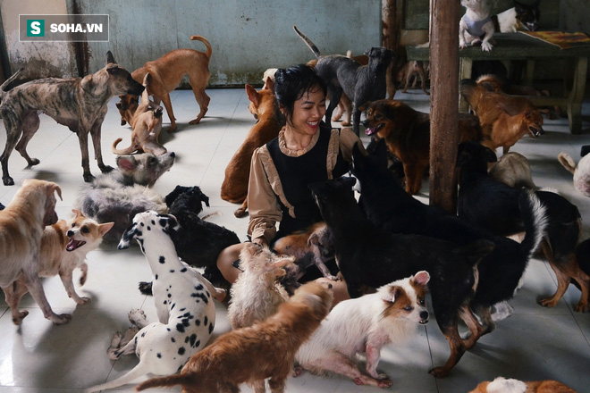 Cặp vợ chồng cưu mang 100 con chó, mèo bị chủ F0 bỏ rơi mùa dịch: 'Chúng tôi không sinh con để chu toàn cho tụi nhỏ' - Ảnh 1.