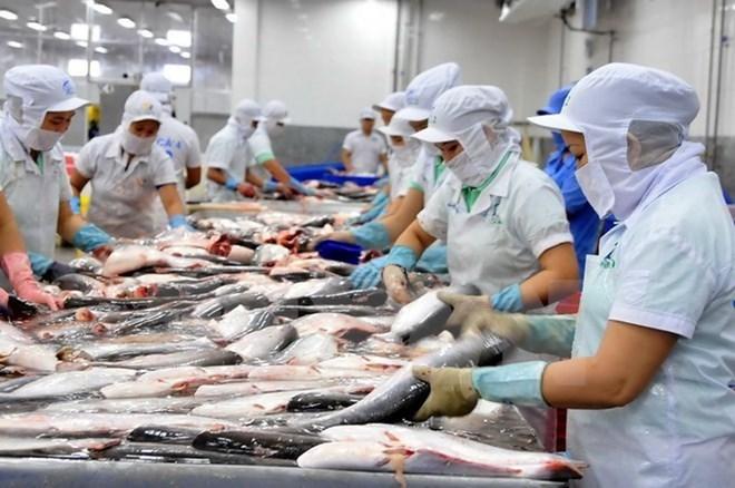 Nhận công thư của Bộ trưởng Công thương Việt Nam, Campuchia bất ngờ bỏ lệnh cấm nhập khẩu 4 loại cá từ Việt Nam - Ảnh 2.