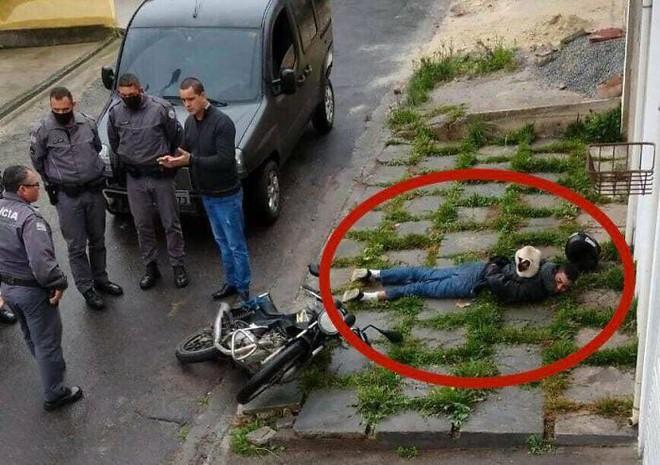 13 bức ảnh của những kẻ xui tận mạng: Làm người đã khổ, làm cây cối cũng chưa chắc sướng hơn - Ảnh 1.