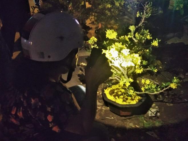 Đêm giao thừa người TPHCM soi đèn mua hoa Tết giải cứu nông dân - Ảnh 4.