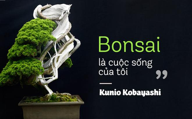 Top 10 cây Bonsai đẹp nhất thế giới