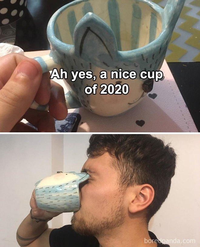19 bức ảnh hài hước về năm 2020 mà ai cũng chỉ muốn qua càng nhanh càng tốt - Ảnh 17.