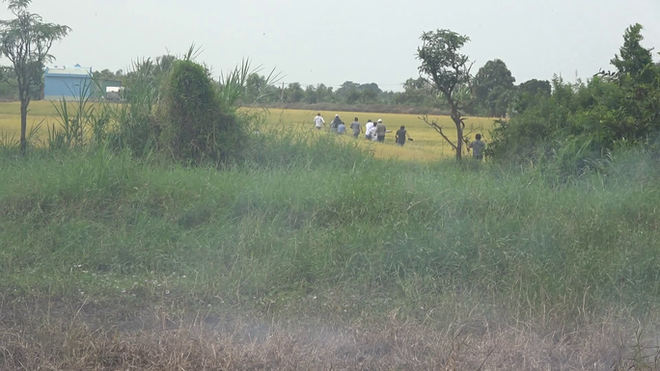 Thấy công an, nhiều con bạc chạy tán loạn ra ruộng lúa - Ảnh 1.