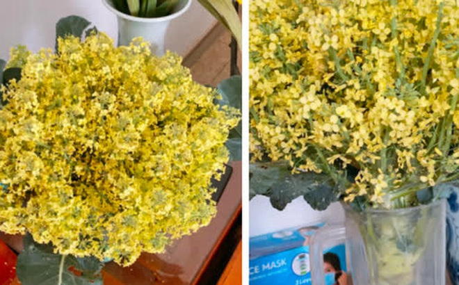 Khoe bó hoa rực rỡ chỉ đáng chục nghìn đồng, mẹ trẻ khiến tất thảy kinh ngạc vì nguồn gốc 'quên không xào thịt bò'?