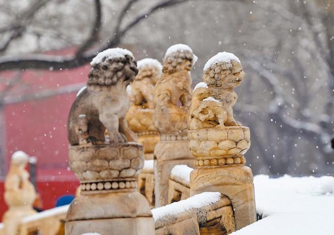 Truyền thuyết sư tử đá đã giúp Tử Cấm Thành thu hút rất nhiều khách tham quan du lịch. Ảnh: Sohu