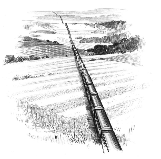 Hơn 1.000 km quan tài: Loạt phác họa gây sốc về số người thiệt mạng do COVID-19 tại Mỹ - Ảnh 2.
