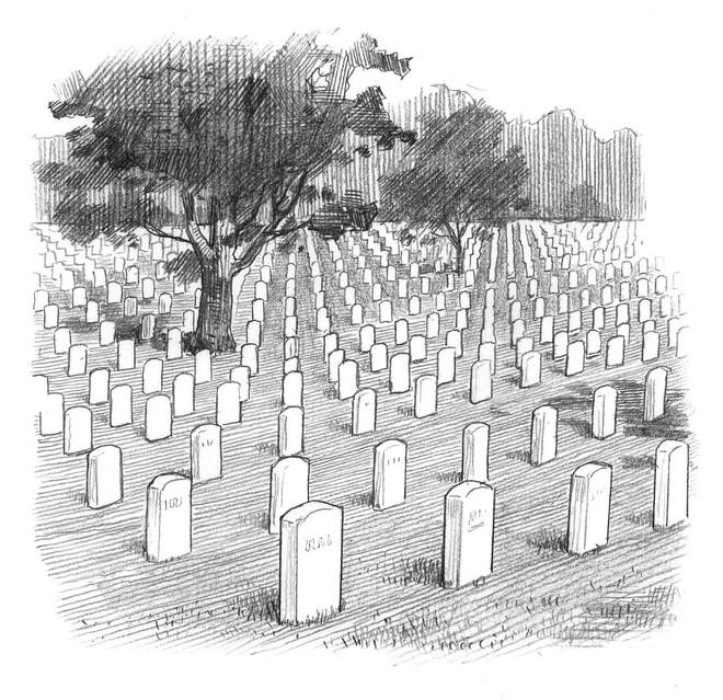 Hơn 1.000 km quan tài: Loạt phác họa gây sốc về số người thiệt mạng do COVID-19 tại Mỹ - Ảnh 6.