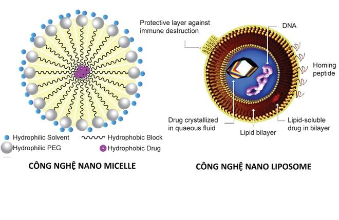 Bí mật về tấm khiên cực mạnh - khẩu trang made in Vietnam 100% mang tên Wakamono, diệt virus Corona đến 99% - Ảnh 3.