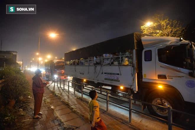 Cuộc giải cứu nông sản Hải Dương lúc nửa đêm tại Hà Nội, nhiều người mua cả tạ hàng - Ảnh 7.