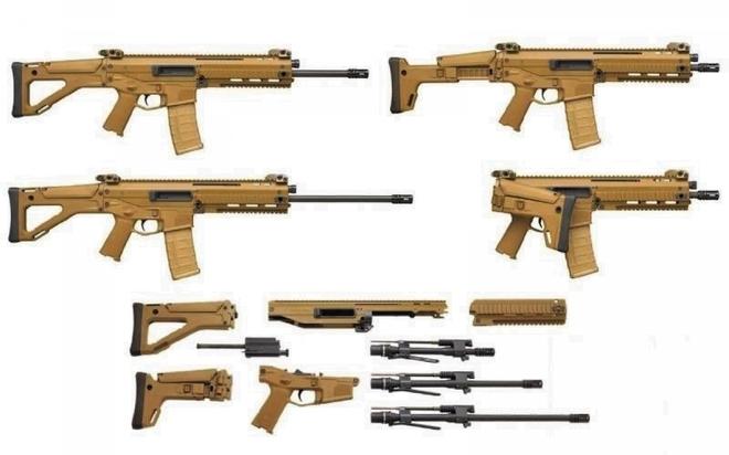 Triển vọng của vũ khí mô-đun - Ảnh 4.