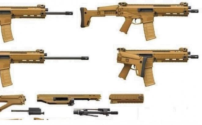 Triển vọng của vũ khí mô-đun