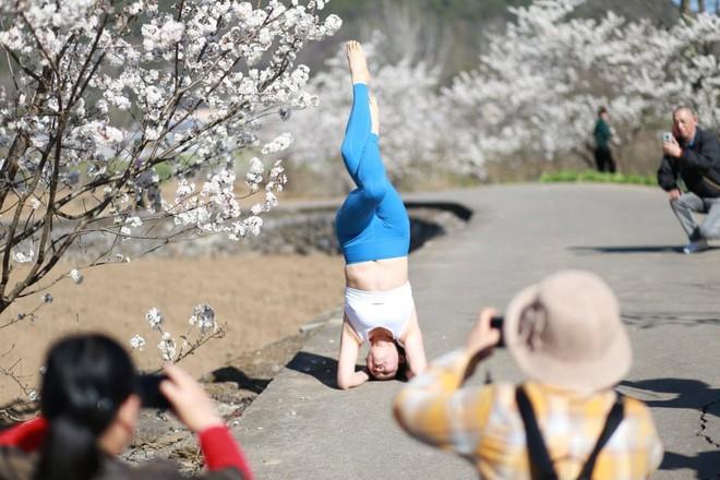 24h qua ảnh: Cô gái tập yoga cạnh cây hoa anh đào nở rộ - Ảnh 6.