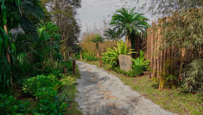 Vườn chữa lành rộng 9.000 m2 của ông Đặng Lê Nguyên Vũ: Khách trả vé bằng… cây - Ảnh 2.