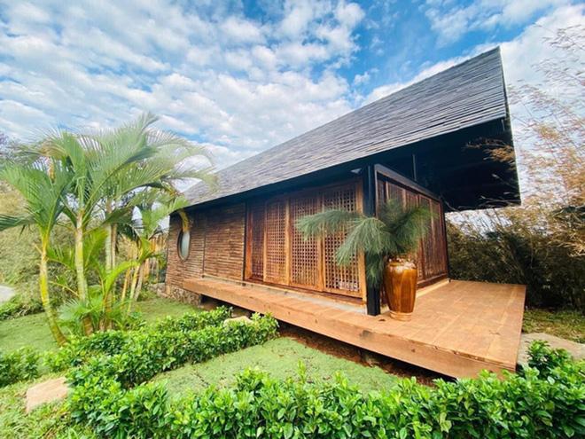 Vườn chữa lành rộng 9.000 m2 của ông Đặng Lê Nguyên Vũ: Khách trả vé bằng… cây - Ảnh 4.