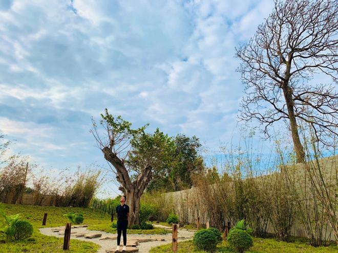 Vườn chữa lành rộng 9.000 m2 của ông Đặng Lê Nguyên Vũ: Khách trả vé bằng… cây - Ảnh 5.