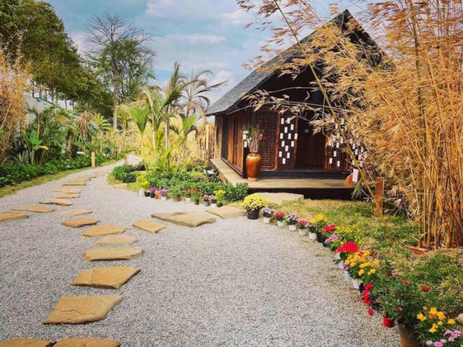 Vườn chữa lành rộng 9.000 m2 của ông Đặng Lê Nguyên Vũ: Khách trả vé bằng… cây - Ảnh 6.