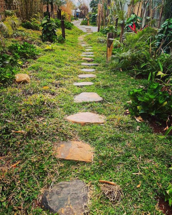 Vườn chữa lành rộng 9.000 m2 của ông Đặng Lê Nguyên Vũ: Khách trả vé bằng… cây - Ảnh 7.