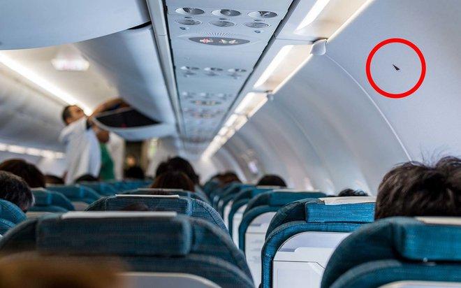 Tiếp viên hàng không tiết lộ 5 điều ít ai để ý khi đi máy bay: Bạn có biết ý nghĩa của hình tam giác này? - Ảnh 2.