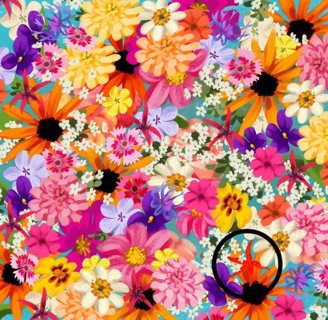 Thách thức thị giác 3 giây: Đố bạn nhìn ra con sao biển trong bụi hoa sắc màu - Ảnh 2.