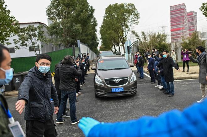 Nhóm điều tra sự thật của WHO đã đến chợ hải sản Vũ Hán, chia sẻ về một cảnh tượng gây sốc - Ảnh 3.