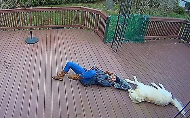 Chú chó giằng co áo kéo lê làm ngạt thở cô gái, ngỡ tai nạn đẫm máu kinh hoàng nhưng sự thật không như mọi người nghĩ