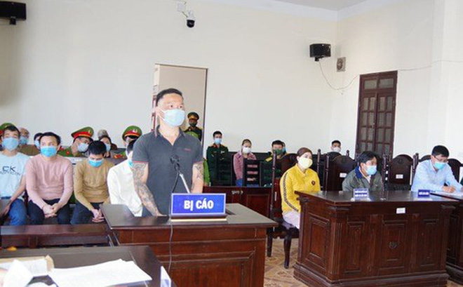Tòa án Quân sự tuyên phạt 6 bị cáo đầu độc rừng thông ven Quốc lộ 14